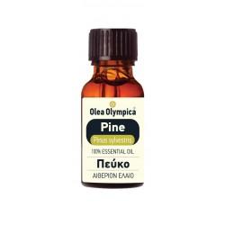 Pine Tree (Pinus sylvestris)
